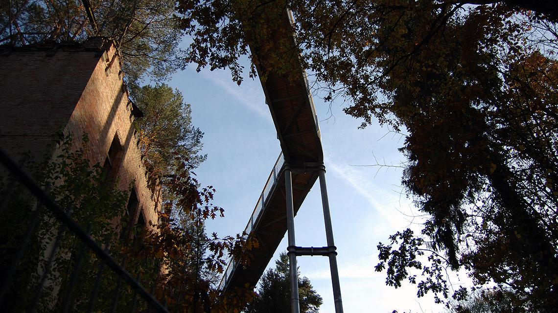 Baumkronenpfad-Beelitz