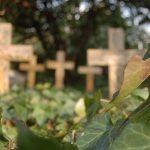 Friedhof-Grunewald-Forst-Berlin