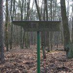 Friedhof-Grunewald-Forst-Wegweiser