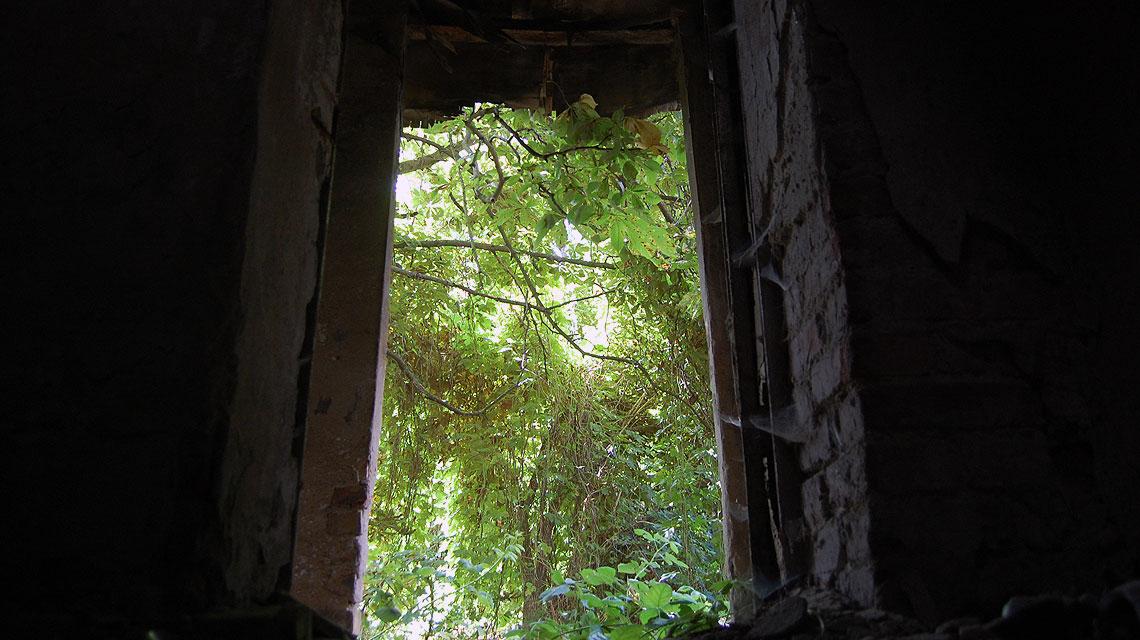 Verlassenes-Haus-Berlin-Hintertür
